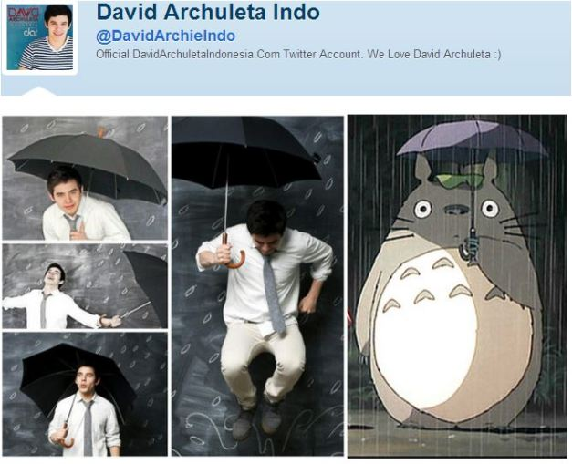 umbrellas and totoro