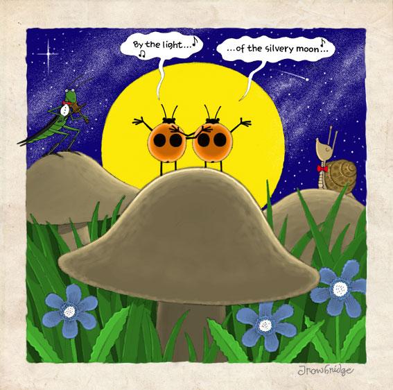 ladybird duet