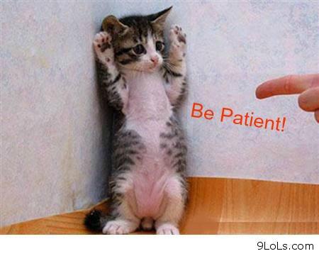 patient archie says