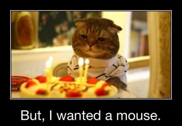 birthday want a mouse