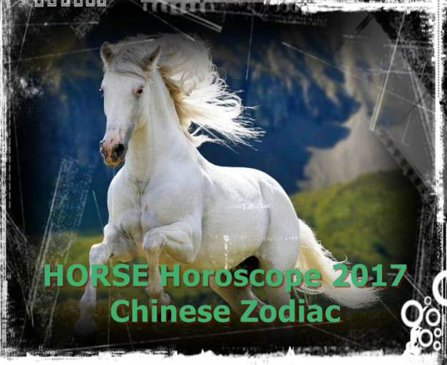Image result for horse astrology
